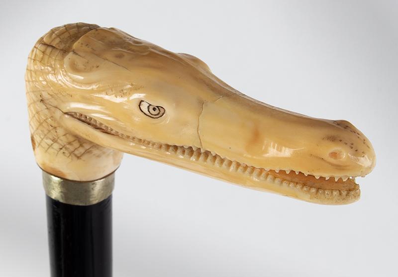 Antique, Carved Alligator Walking Stick, Victorian Cane Unknown Maker, signed, head detail 3