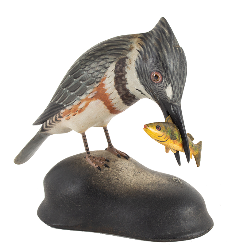 Elmer Crowell, (1862-1952), Full Size King Fisher with Original Perch in Mouth East Harwich, Massachusetts  Excellent condition…a truly spectacular work of art, entire view 2