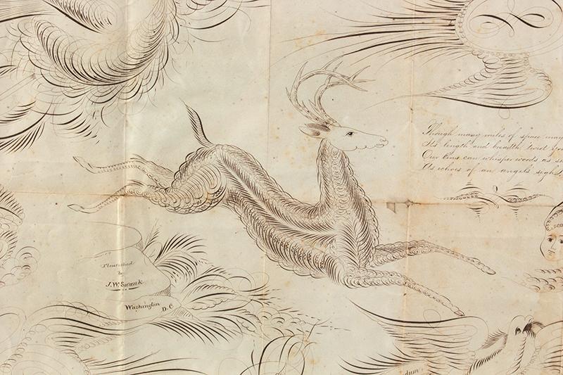 Spencerian Drawings on Single Sheet, Love Token to Cousin Mollie Flourished by J.W. Swank, Washington, D.C.  19th Century Nil desperandum [do not despair, never despair], detail view 1
