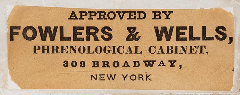 19th Century Phrenological Head, Fowlers & Wells, N.Y., label view