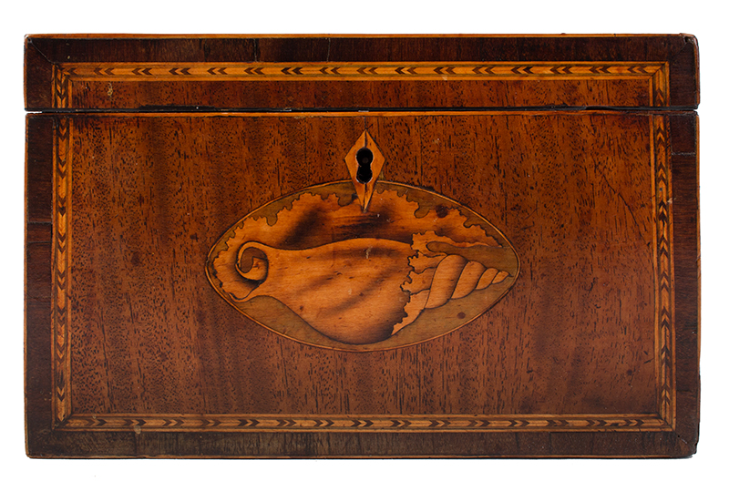 Georgian Mahogany Tea Caddy, Double Conch Shell Inlays English, circa 1795-1810, entire view 3