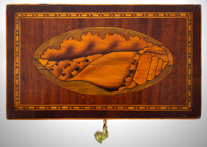 Georgian Mahogany Tea Caddy, Double Conch Shell Inlays English, circa 1795-1810, entire view 4