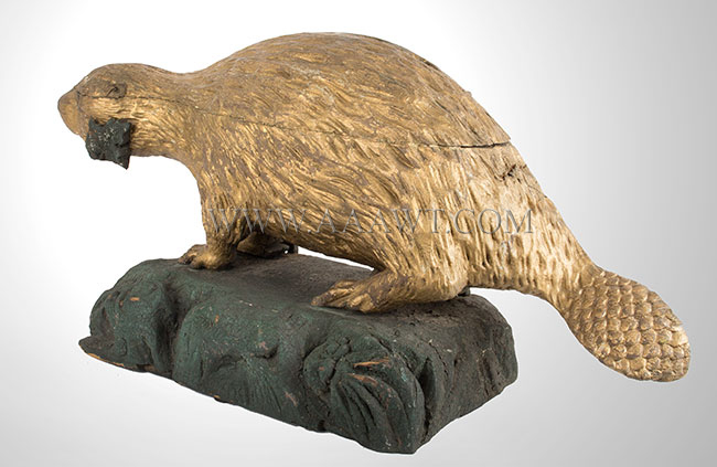 Folk Art, Carved Beaver, Gilded and Painted Architectural Expression National Symbol of the Sovereignty of Canada, entire view 3