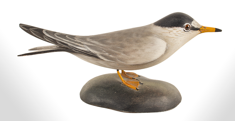 Elmer Crowell, (1862-1952), Carved and Painted Decorative Least Tern East Harwich, Massachusetts, entire view 2