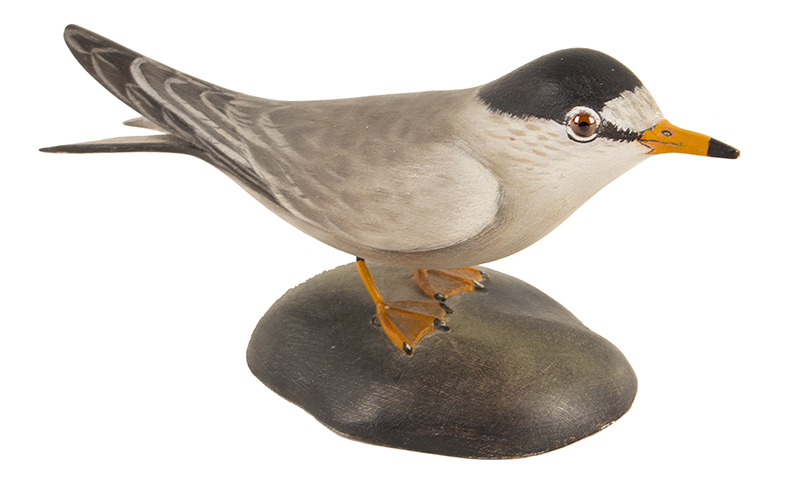 Elmer Crowell, (1862-1952), Carved and Painted Decorative Least Tern East Harwich, Massachusetts, entire view 3