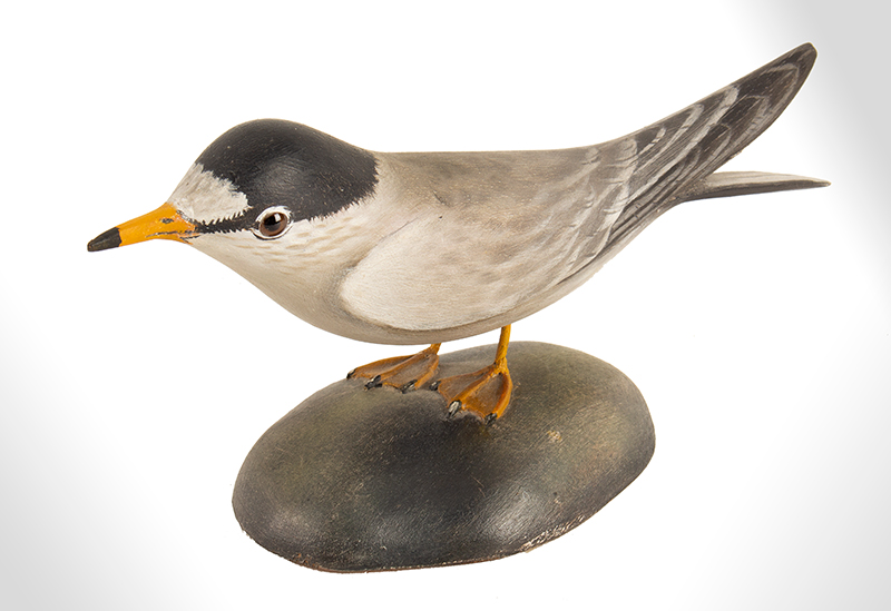 Elmer Crowell, (1862-1952), Carved and Painted Decorative Least Tern East Harwich, Massachusetts, entire view 4