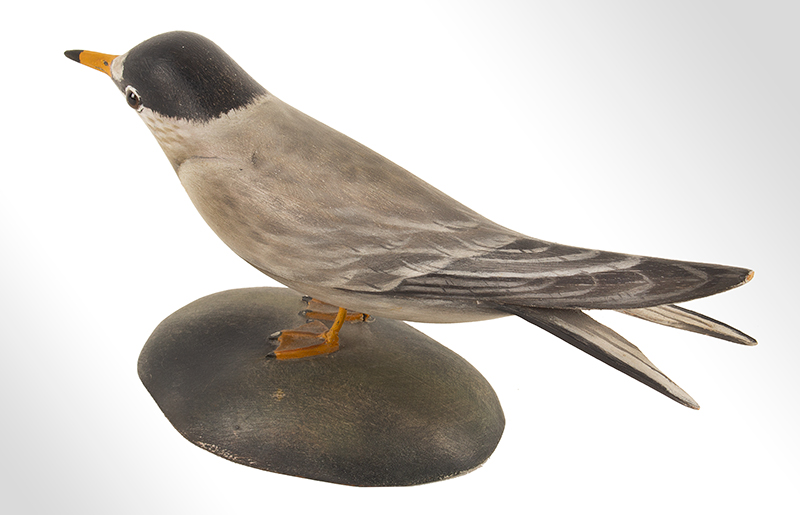 Elmer Crowell, (1862-1952), Carved and Painted Decorative Least Tern East Harwich, Massachusetts, entire view 5