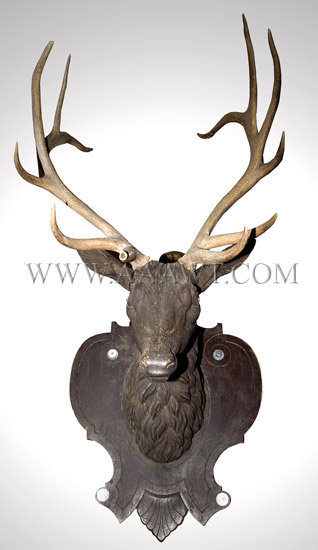 Antique Carving, Elk Head, with Real Antlers, entire view