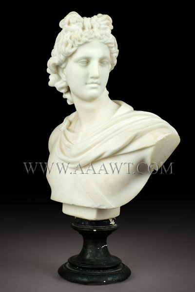 Antique Marble Bust, Apollo Belvedere, 19th Century, entire view