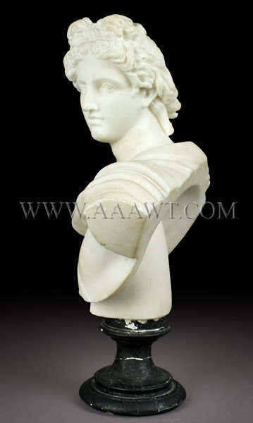 Antique Marble Bust, Apollo Belvedere, 19th Century, facing left view